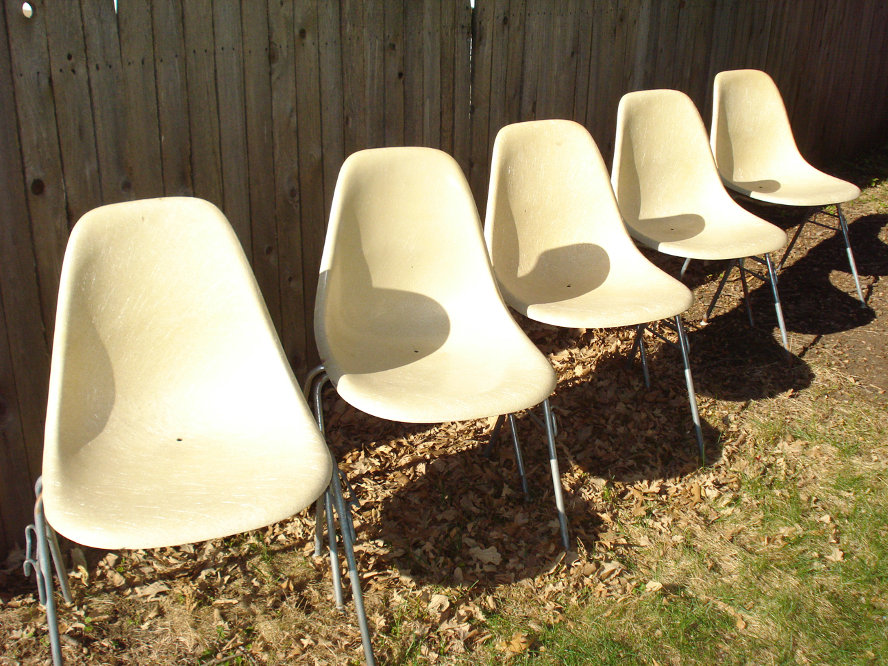 Herman Miller fiberglass shell chairs, parchment color